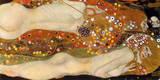 Wasserschlangen II Giclee-tryk i høj kvalitet af Gustav Klimt