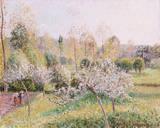Blühende Apfelbäume in Eragny Stampa giclée premium di Camille Pissarro