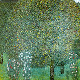 Rosensträucher Unter Bäumen Reproduction procédé giclée Premium par Gustav Klimt