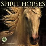 Spirit Horses - 2015 Calendar Calendriers