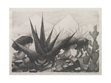 Indians and Magney Plants, 1928 Gicléetryck av Jose Clemente Orozco