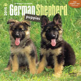 German Shepherd Puppies - 2015 Mini Calendar Calendars