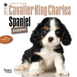 Cavalier King Charles Spaniel Puppies - 2015 Mini Calendar Calendars