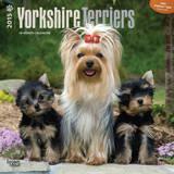Yorkshire Terriers - 2015 Calendar Calendars