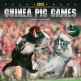 Guinea Pig Games - 2015 Calendar Calendars