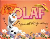 Disney Frozen - Olaf Love All Things Summer Canvas Gallery Wrapped Canvas