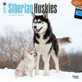 Siberian Huskies - 2015 Calendar Calendars