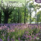 Wisconsin, Wild & Scenic - 2015 Calendar Calendars