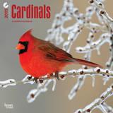 Cardinals - 2015 Calendar Calendars