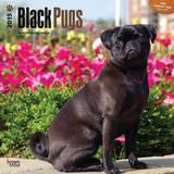 Black Pugs - 2015 Calendar Calendars