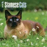 Siamese Cats - 2015 Calendar Calendriers