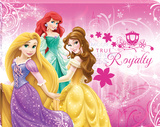 Disney Princess - Princess True Royalty Canvas Stretched Canvas Print