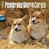 Pembroke Welsh Corgis - 2015 Calendar Calendars