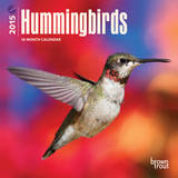 Hummingbirds - 2015 Mini Calendar Calendars