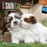 Shih Tzu Puppies - 2015 Mini Calendar Calendars