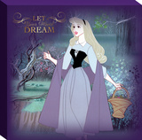 Disney Sleeping Beauty - Aurora Frame Solo Canvas Stretched Canvas Print