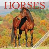 Horses - 2015 Calendar Calendars