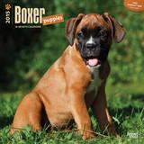 Boxer Puppies - 2015 Calendar Calendars