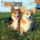 Welsh Corgis - 2015 Calendar Calendars