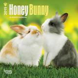 Honey Bunny - 2015 Mini Calendar Calendars