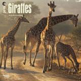 Giraffes - 2015 Calendar Calendars