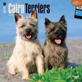 Cairn Terriers - 2015 Calendar Calendars