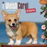 Welsh Corgi Puppies - 2015 Mini Calendar Calendars