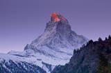 Matterhorn with Larches III Giclee-tryk i høj kvalitet af Thomas Marent