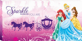 Disney Princess - Princess Carriage Canvas Stretched Canvas Print