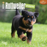 Rottweiler Puppies - 2015 Mini Calendar Calendars