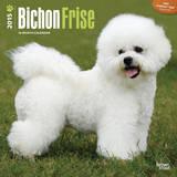 Bichon Frise - 2015 Calendar Calendars