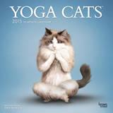 Yoga Cats - 2015 Calendar Calendars
