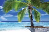 Paradise - 2015 Folder Planner Calendars