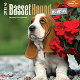 Basset Hound Puppies - 2015 Mini Calendar Calendars