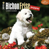 Bichon Frise Puppies - 2015 Mini Calendar Calendars