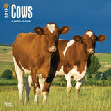 Cows - 2015 Calendar Calendars
