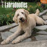 Labradoodles - 2015 Calendar Calendars