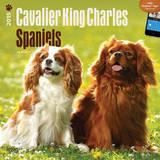 Cavalier King Charles Spaniels - 2015 Calendar Calendriers