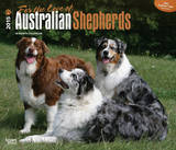 For the Love of Australian Shepherds - 2015 Deluxe Calendar Calendars
