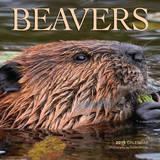 Beavers - 2015 Calendar Calendars