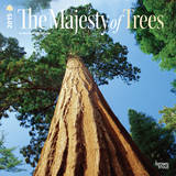The Majesty of Trees - 2015 Calendar Calendars