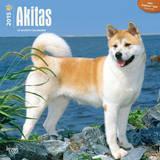Akitas - 2015 Calendar Calendars