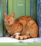 Cat Lovers - 2015 Monthly Personal Planner Calendars