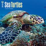 Sea Turtles - 2015 Calendar Calendriers