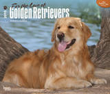 For the Love of Golden Retrievers - 2015 Deluxe Calendar Calendars