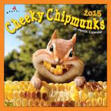 Cheeky Chipmunks - 2015 Calendar Calendars