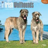Irish Wolfhounds - 2015 Calendar Calendars