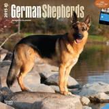 German Shepherds - 2015 Calendar Calendars
