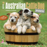 Australian Cattle Dog Puppies - 2015 Mini Calendar Calendars