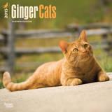Ginger Cats - 2015 Calendar Calendriers